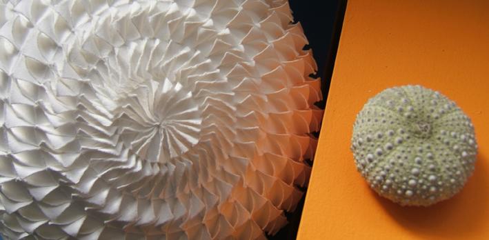 Swirl and Sea Urchin, 2012